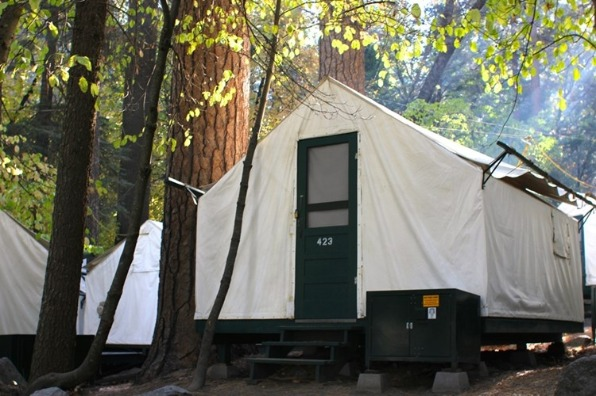Tent camping in Curry Village