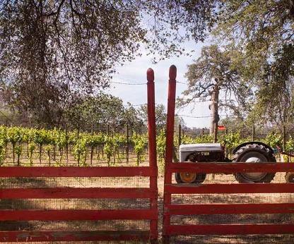 Westbrook Wine Farm