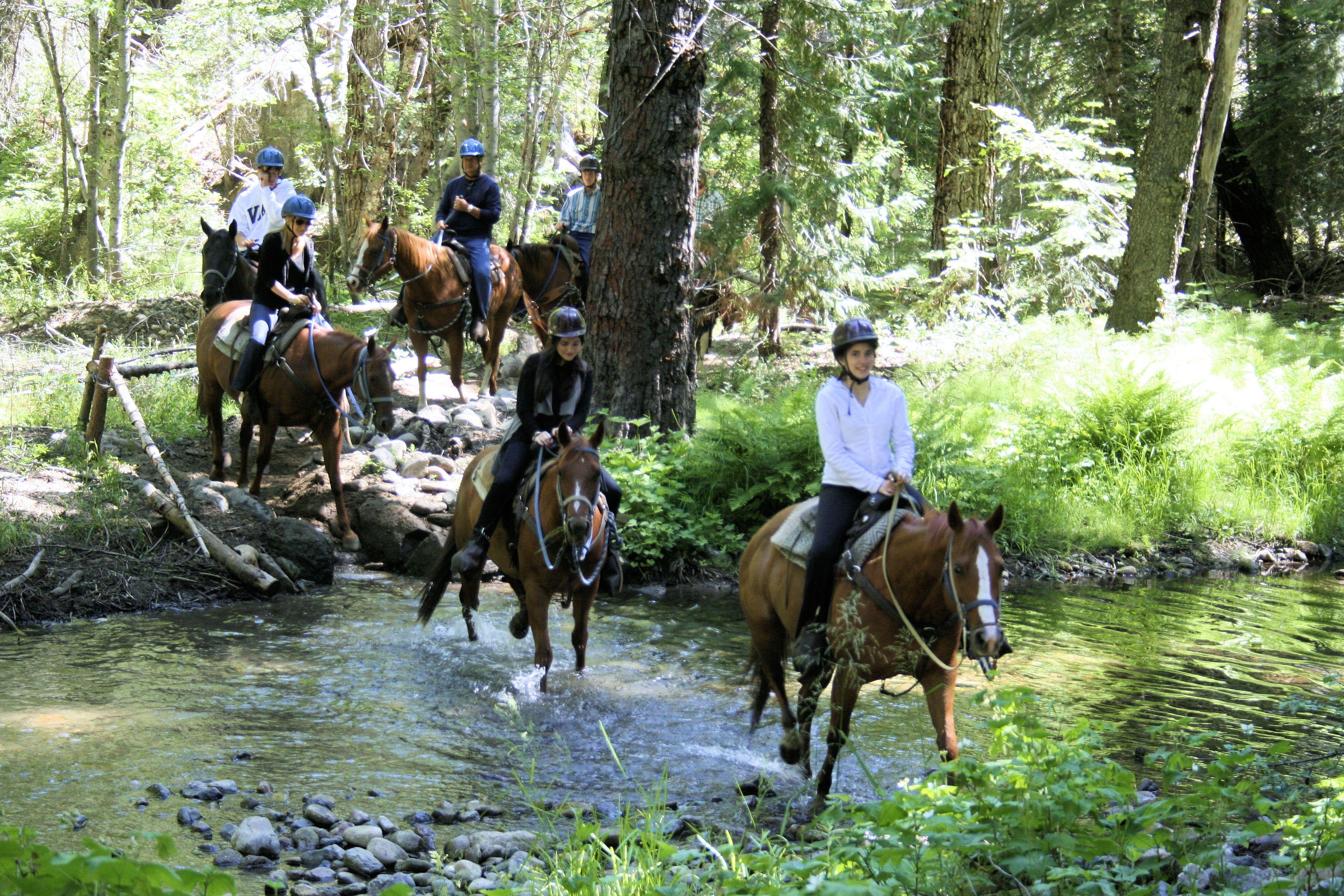 Yosemite Trails Pack Station riders