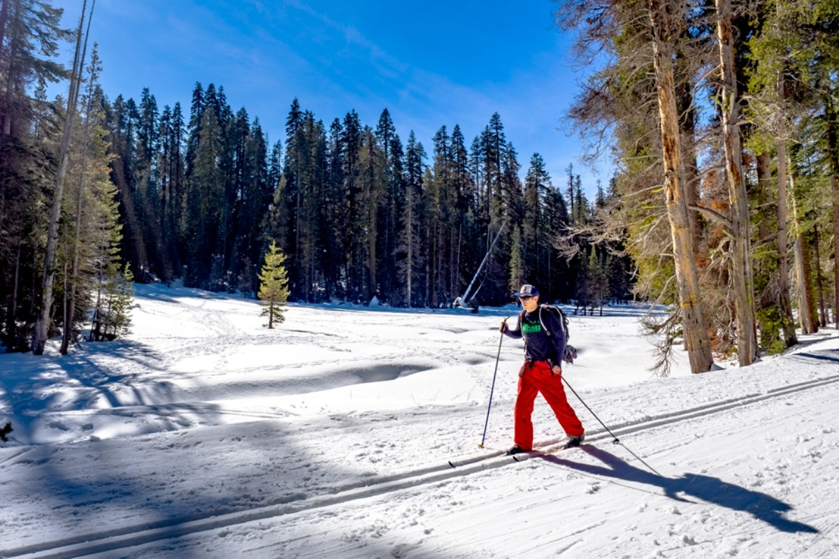 Cross Country Skiing on Glacier Point Road, Summit Meadow, Yosemite National Park