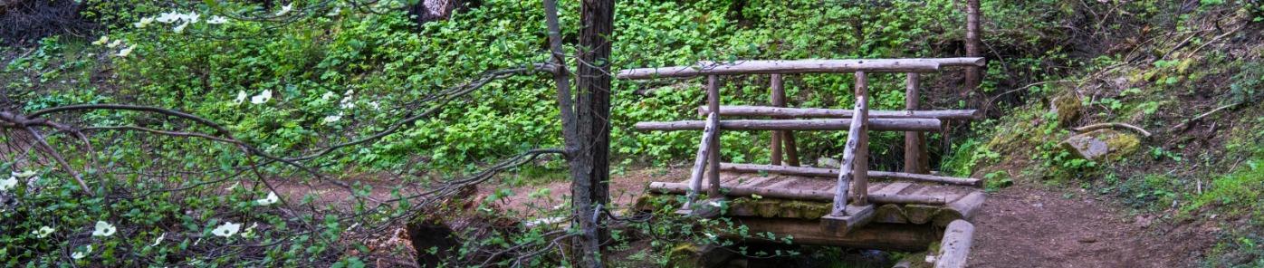 Lewis Creek trail and foot bridge - Sierra National Forest