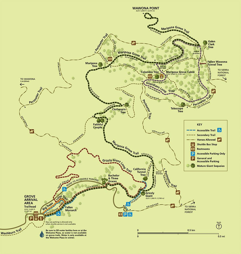 Mariposa Grove, Map, Trails