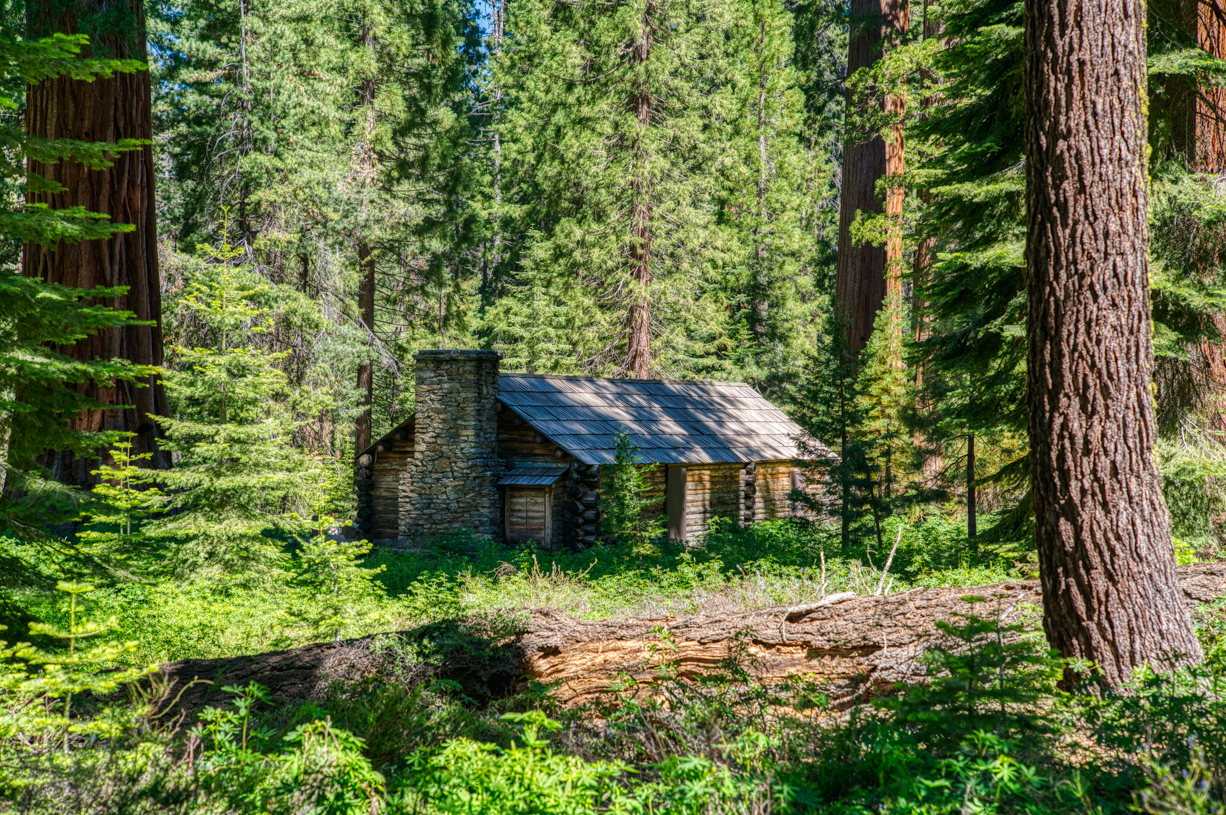 Mariposa Grove, Giant Sequoias, Hiking, Yosemite National Park, Cabin
