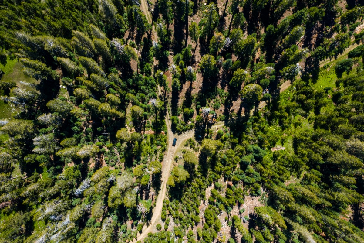 Sierra National Forest, Forest Service Roads, adventure, Madera County