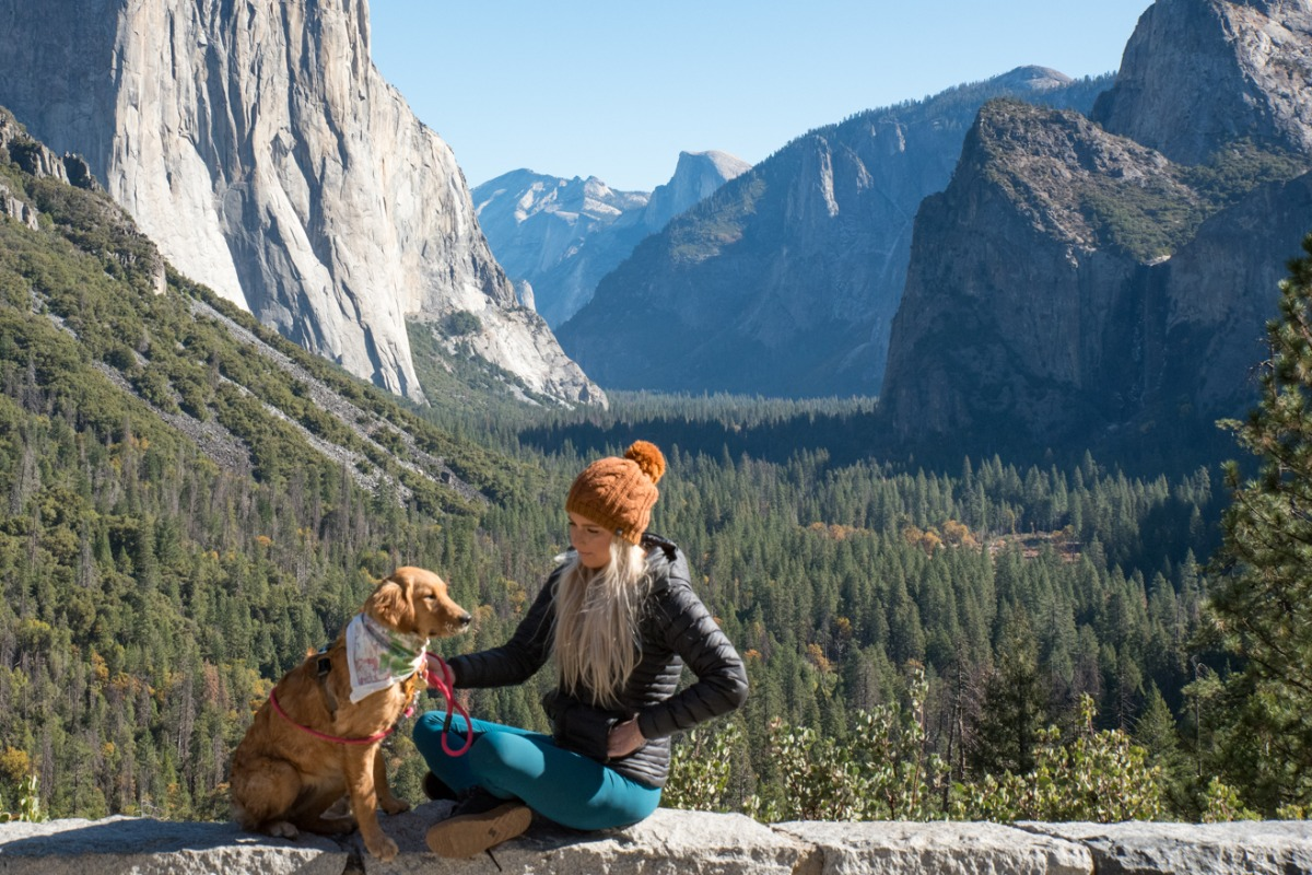 Tunnel View is a prefect place to show your dog the awesome sights of Yosemite