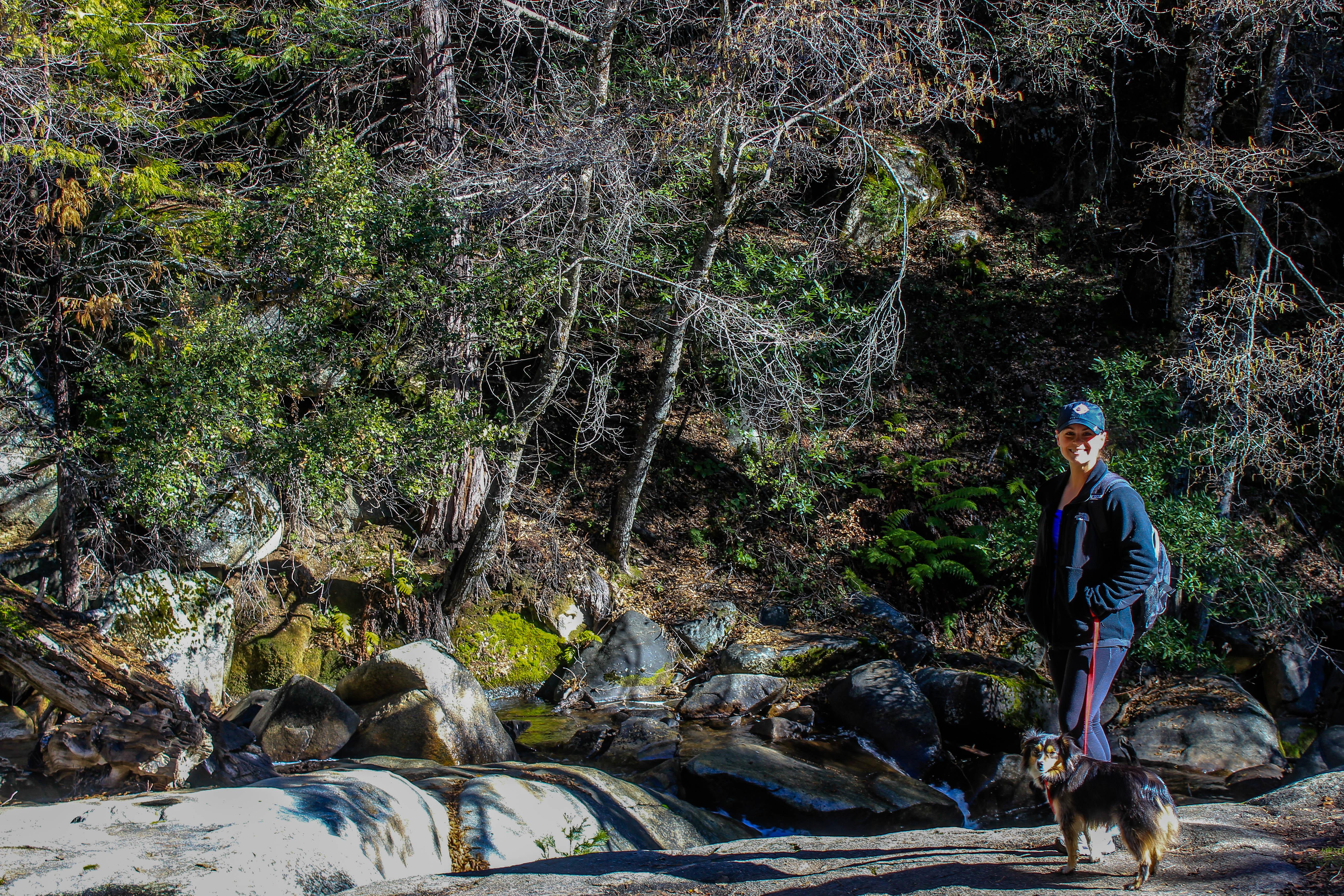 Walking along the pet friendly Lewis Creek Trail