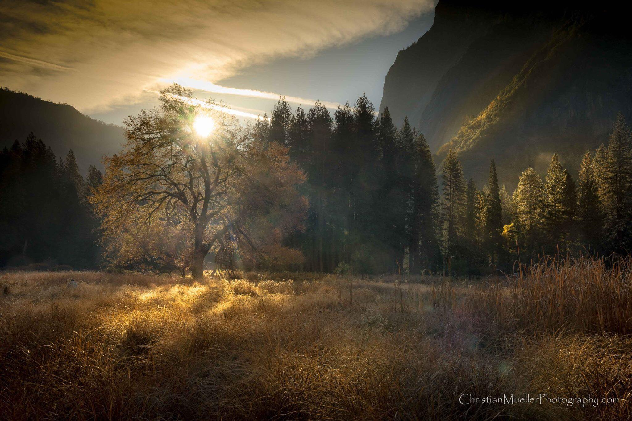 Early morning light at Yosemite's Cooks Meadow
