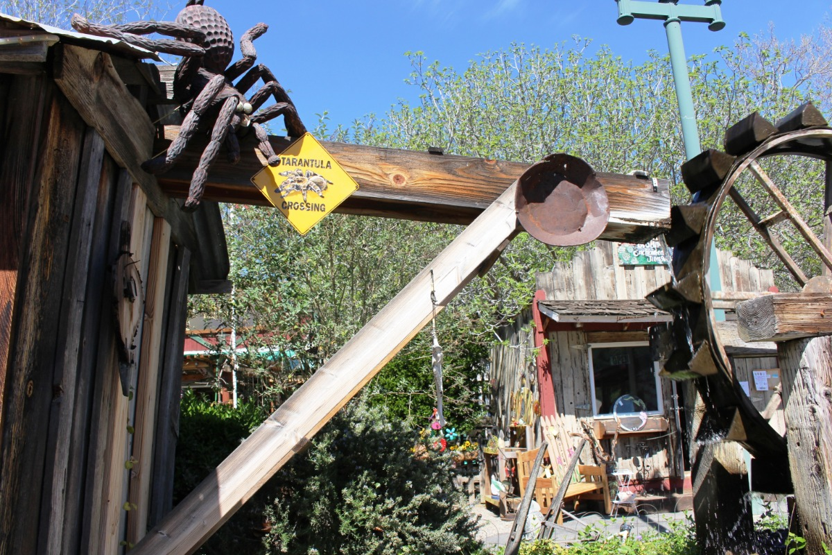 Coarsegold Historic Village Tarantula Festival
