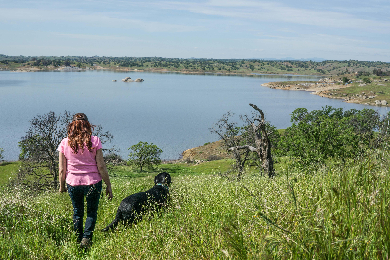 Dog Friendly Hensley Lake