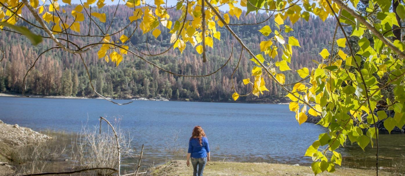 Fall Colors at Bass Lake