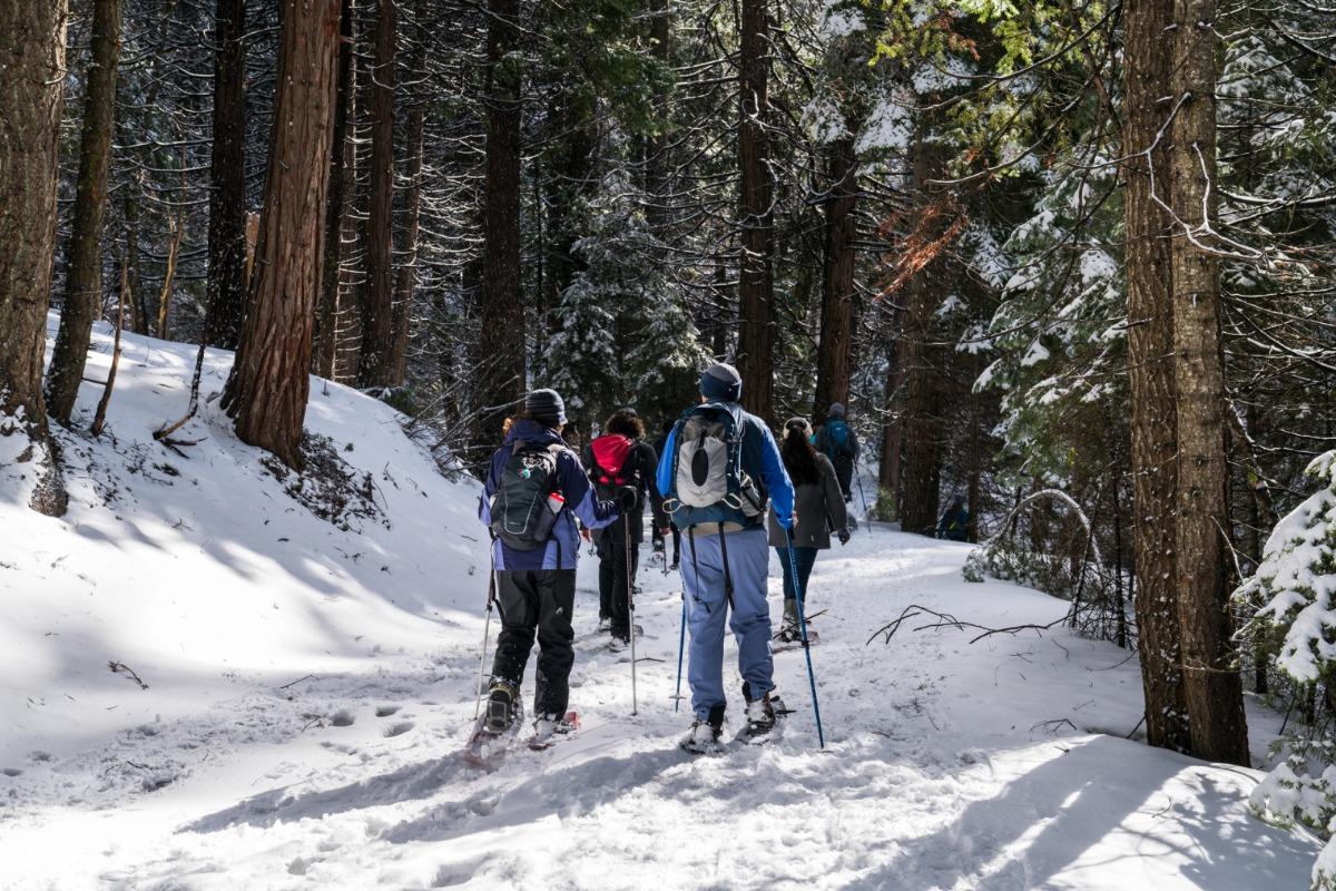 Beginning a snowshoeing adventure at the Washburn Trail trailhead