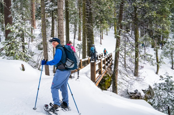 Snowshoeing in the Mariposa Grove of Giant Sequoias with the Yosemite Conservancy