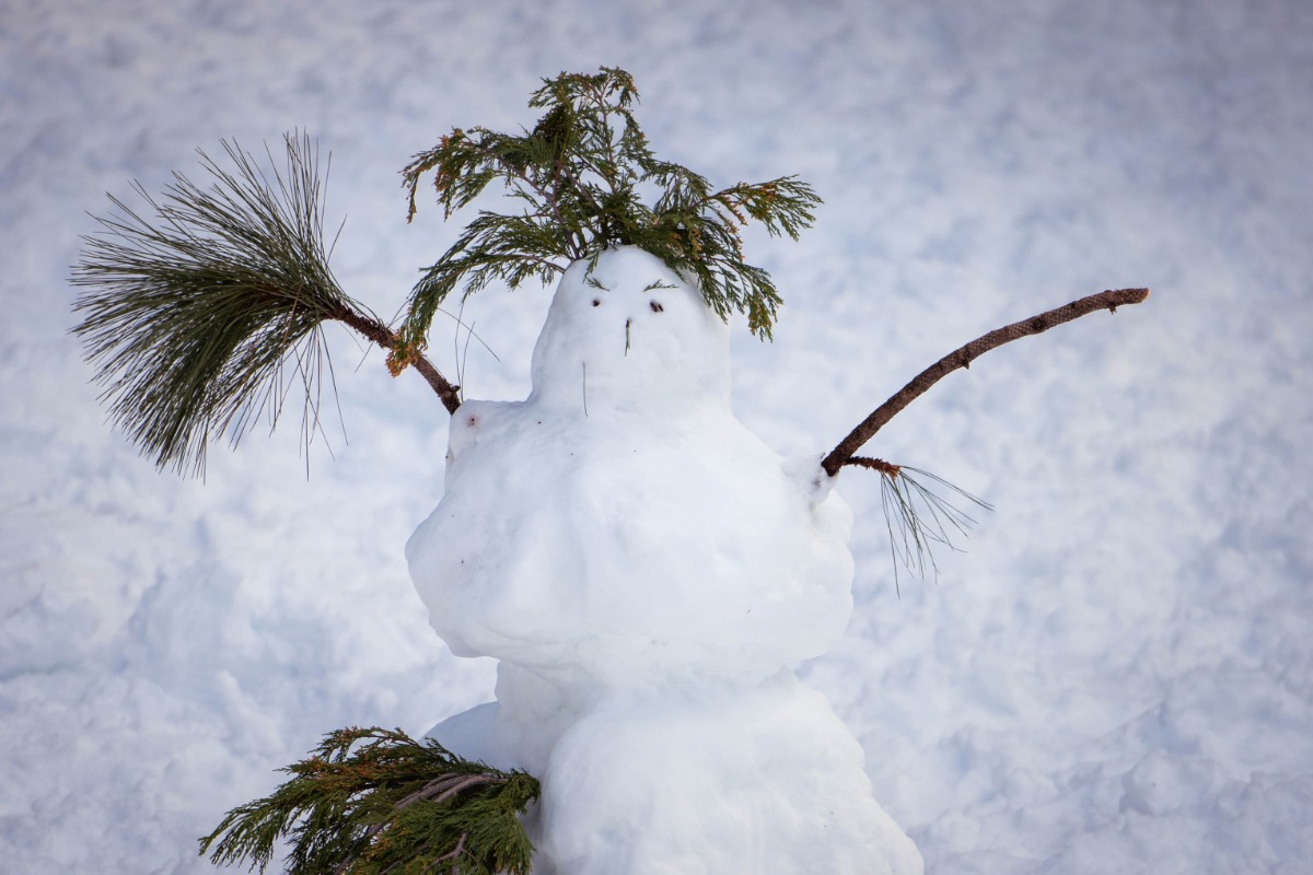 Snowman at the Goat Meadow Snowplay Area