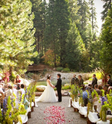 Paradise Springs Wedding