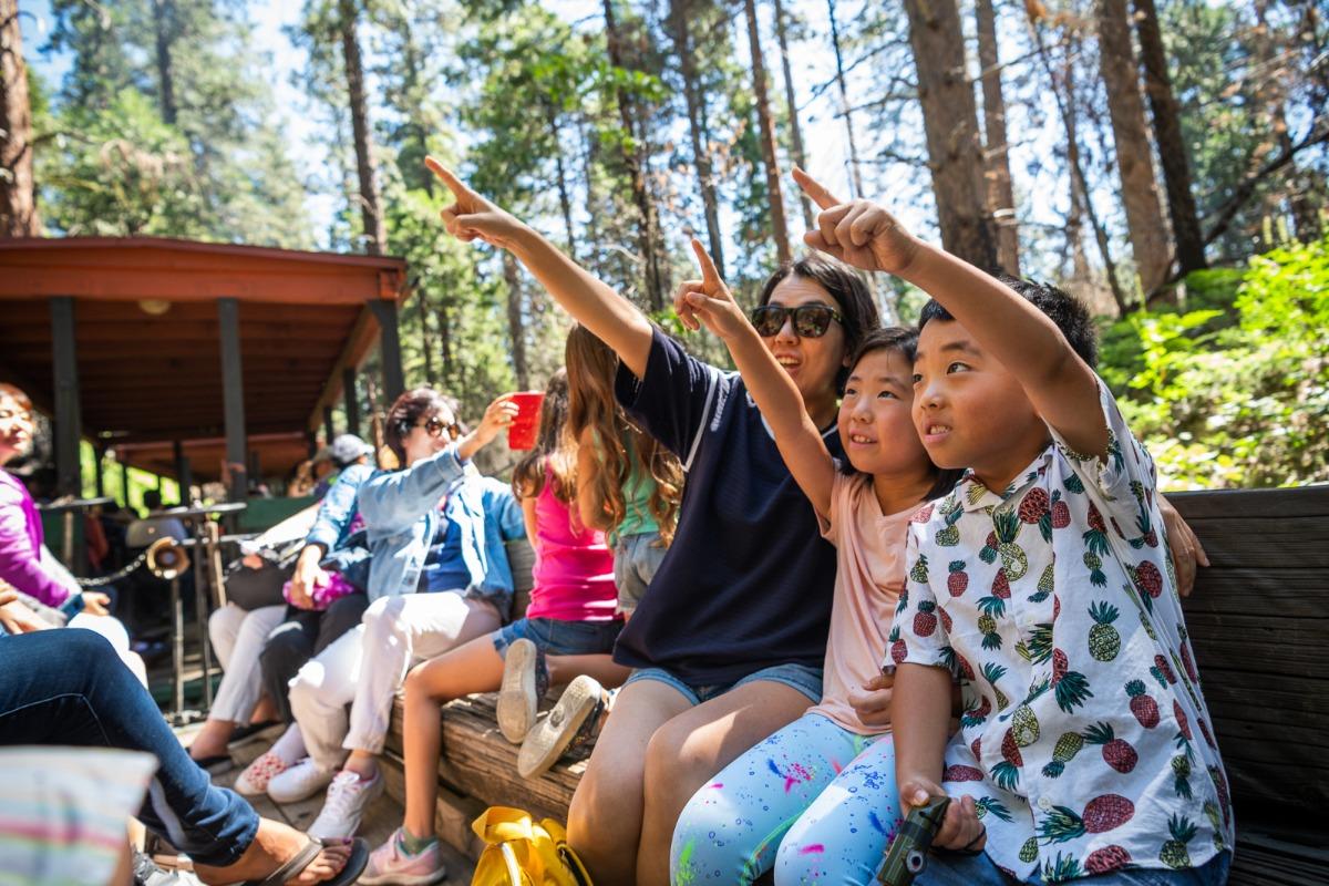 Family Friendly activities on the Yosemite Mountain Sugar Pine Railroad
