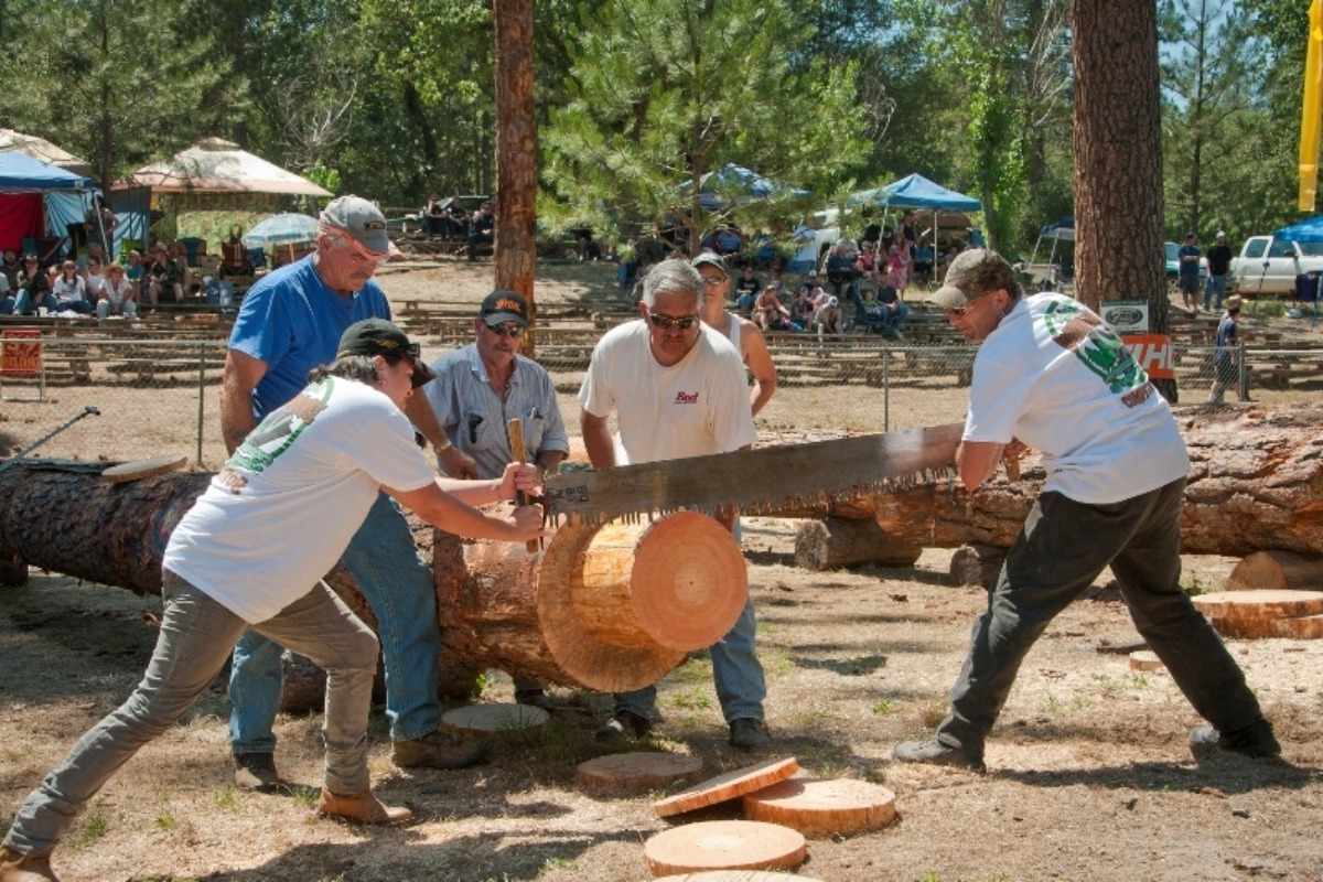 Double Hand Bucking Competition during the North Fork Loggers Jamboree